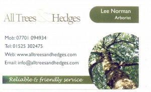 All Trees and Hedges Business Card