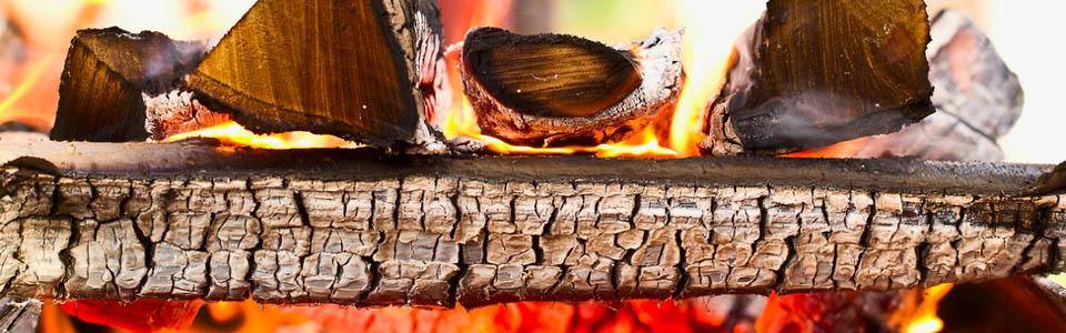 Economy Logs